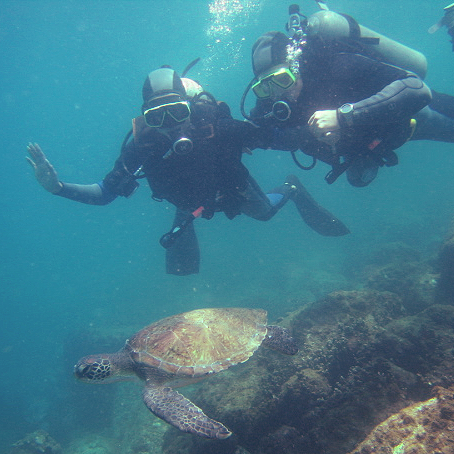 Scuba Diving at Arraial do Cabo